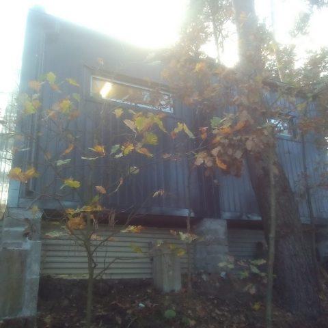 kontener mieszkalny w lesie