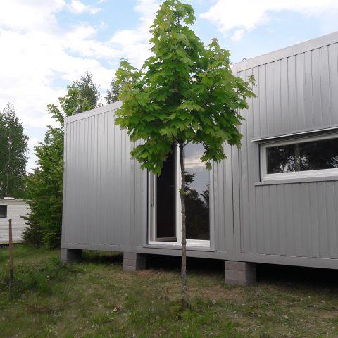 kontenery mieszkalne w lesie